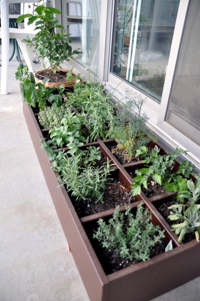 Grass On The Balcony How To Create An Herb Garden