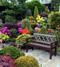 color-scheme-for-your-garden-landscaping-plan-choose-the-best-colors-0-424
