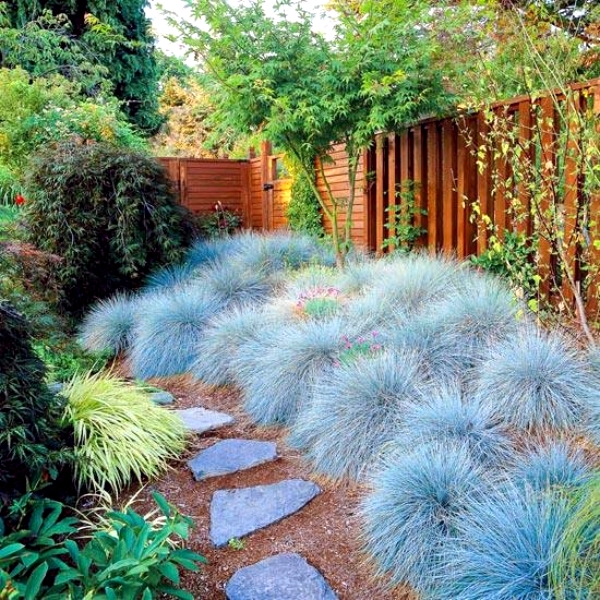 Color scheme for your garden landscaping Plan-choose the best colors