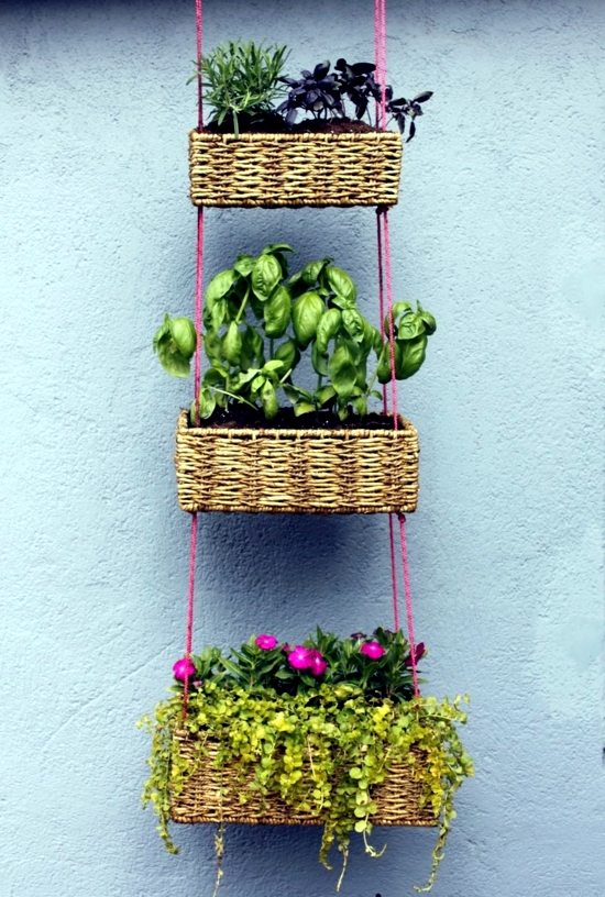 Garden ideas for making your own - planting flowers in the basket