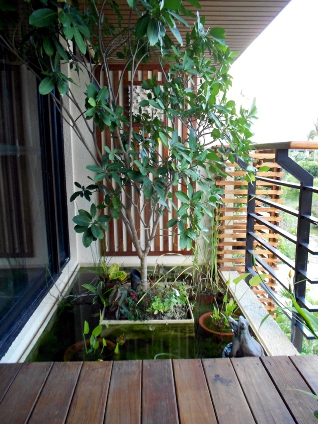 Creating A Mini Pond A Small Oasis On The Balcony