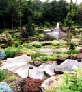 creating-a-rock-garden-where-plants-are-best-placed-0-428