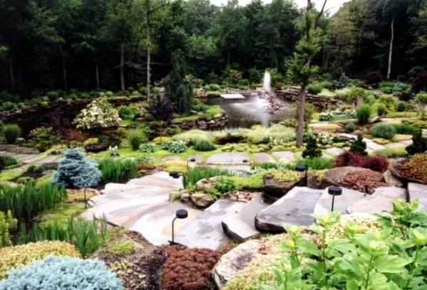 Creating A Rock Garden Where Plants Are Best Placed