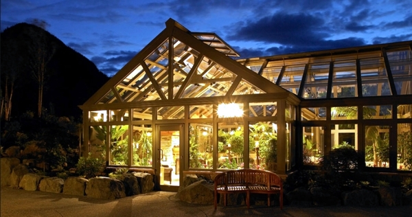 Growing plants in a greenhouse - tips for gardening