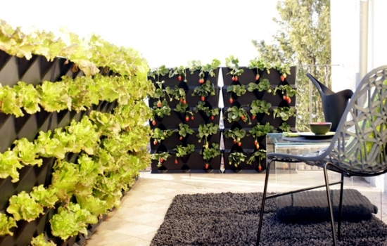 Balcony Vertical greening and effective and inexpensive detection