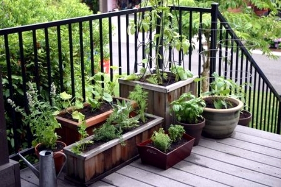 3 Ideas on how to design a limited area of a small garden