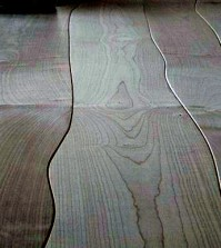 the-bolefloor-hardwood-floors-hardwood-doctorate-in-direct-contact-with-nature-0-473