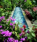 you-want-to-water-the-garden-these-tips-should-note-0-474