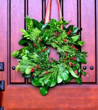 playing-with-a-beautiful-door-wreath-evergreen-advent-0-477