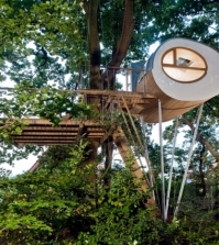 treehouse-experience-timeless-space-between-two-oaks-djuren-0-491