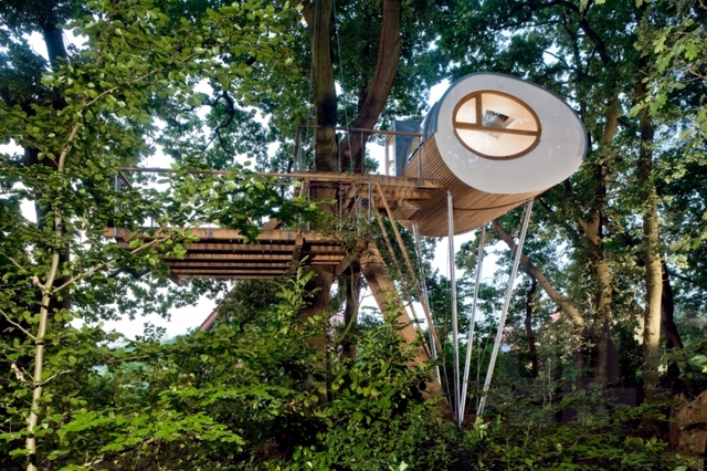 Treehouse Experience timeless space between two oaks Djuren ... on strange houses, fairy houses, tiny houses, amazing flowers, amazing treehouse homes, amazing mansions, unusual houses, cool houses, amazing trucks, amazing hotels, amazing bathrooms, amazing pools, amazing architecture, amazing treehouses of the world, prettiest houses, amazing kitchens, amazing chairs, crazy houses, awesome houses, goat houses,