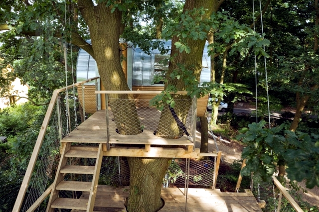 Treehouse Experience timeless space between two oaks Djuren