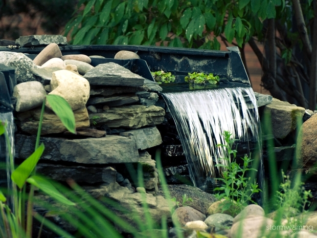 Water features in the garden to make your stay an unforgettable experience