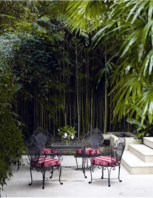 Yes Bamboo garden do at home - important garden design ideas