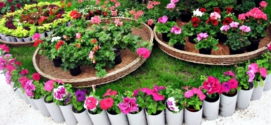 Make a small garden and visually enlarge Tips and Tricks