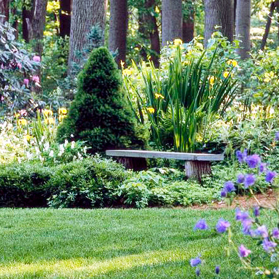 Create and maintain the grass - Ideas for garden design