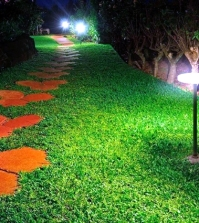 enjoy-the-garden-with-decorative-garden-lights-at-night-0-514