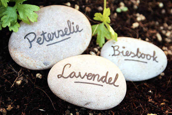 Signs Idea selbermachen grass and plants for your garden