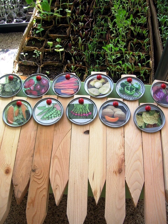 Signs Idea selbermachen grass and plants for your garden – Garden Plant Signs