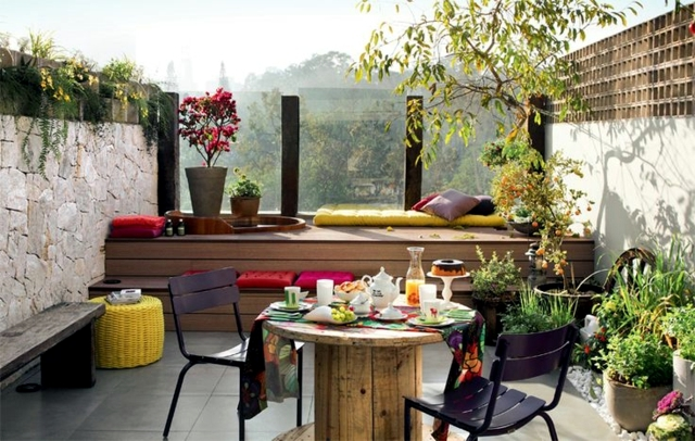 Balcony Hardy Plants - plant and care tips