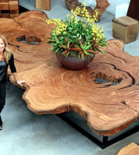 wood-furniture-sustainable-tora-brasil-a-piece-of-wood-in-the-house-0-523