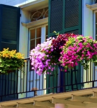 beautify-the-balcony-with-plants-24-ideas-for-the-design-of-the-balcony-0-524