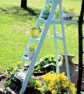 develop-planter-old-wooden-ladder-as-leaders-of-the-flowers-used-0-563