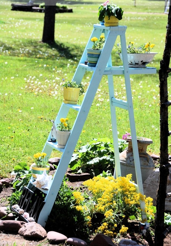 Develop Planter Old Wooden Ladder As Leaders Of The