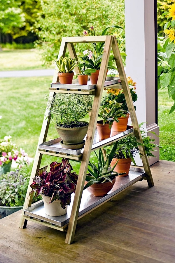 Develop Planter - Old wooden ladder as leaders of the flowers used