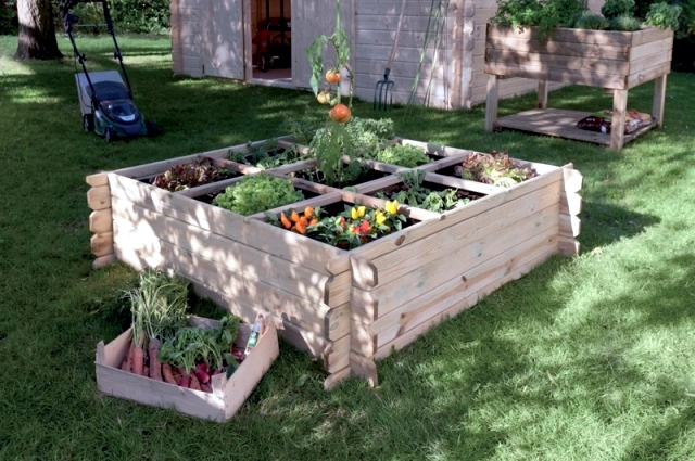 22 ideas for decorative gardens - pleasure for the eyes and palate