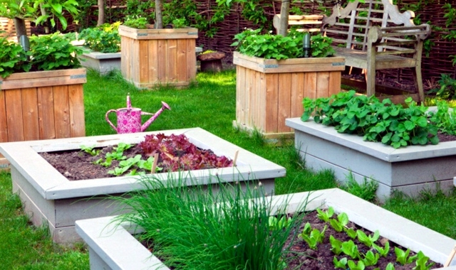 Creating A Garden And To Protect Against The Wind U2013 Tips And Tricks. Vegetable  Garden