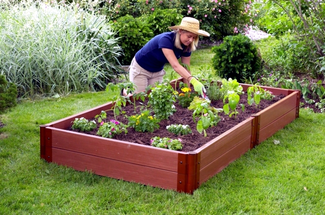 Creating a garden and to protect against the wind - Tips ...