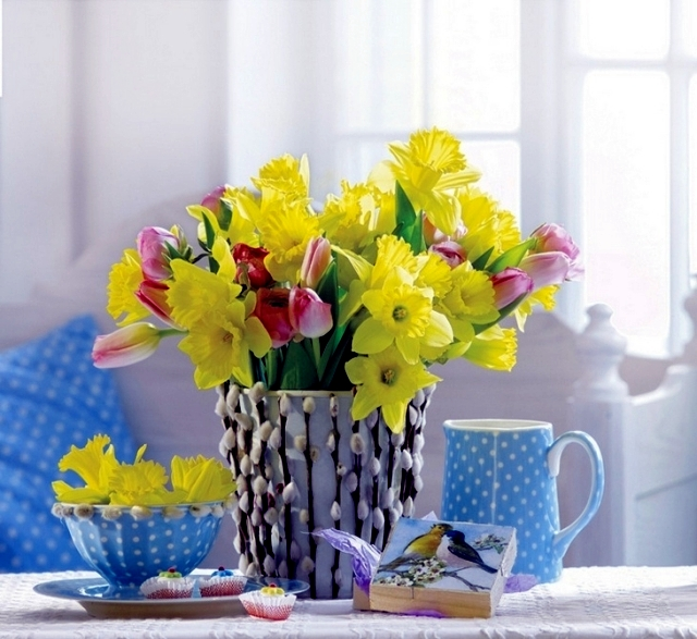 Advice on care of daffodils in the garden and potted flowers