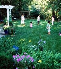grass-in-springtime-useful-tips-for-gardeners-0-593