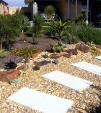 money-time-and-saving-water-in-the-garden-summer-saving-tips-0-594