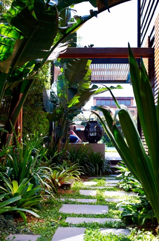 Landscaping Ideas – The secret tropical oasis attracts Sydney ...
