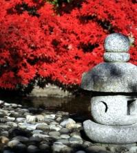 creating-a-japanese-garden-important-elements-of-garden-design-0-604