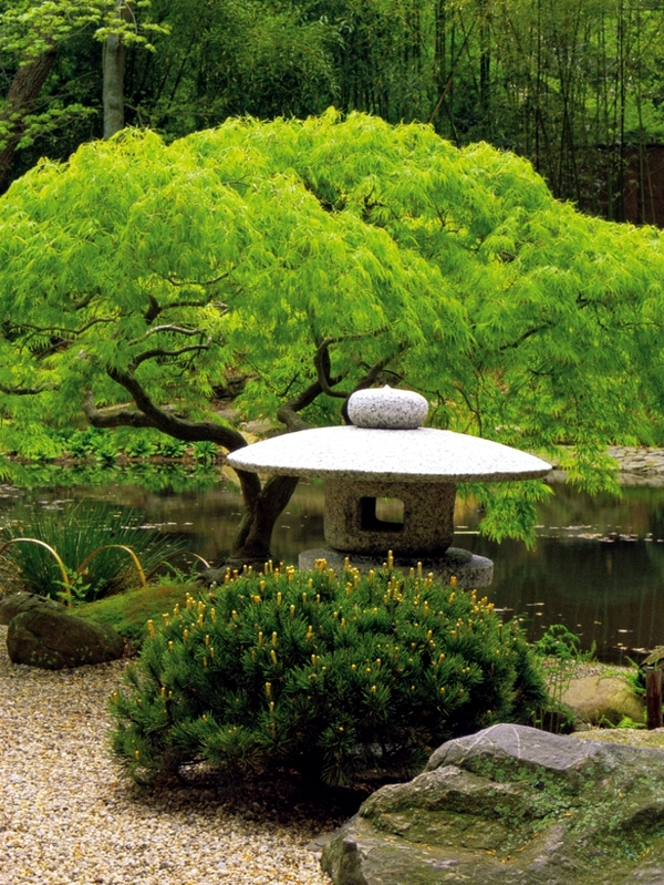 Creating a japanese garden important elements of garden for Creating a japanese garden