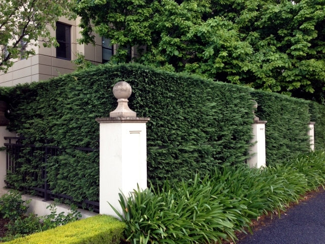 Arriving at the private coverage that you use in the garden?