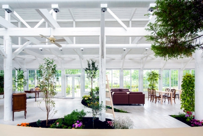 Architects incorporated a modern garden in a greenhouse