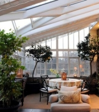 winter-garden-in-the-house-house-plants-bring-nature-indoors-0-612