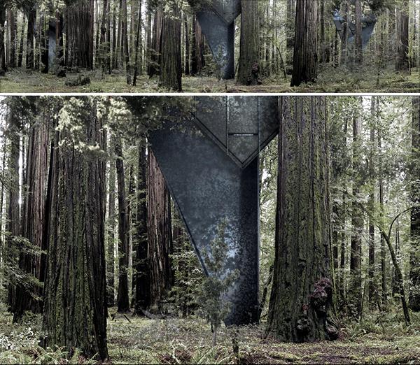 Eco house in the forest 3D views Konrad Wojcik