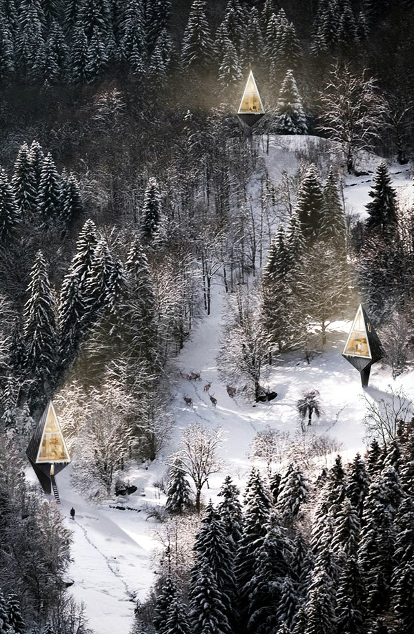 Eco house in the forest 3D views Konrad Wojcik