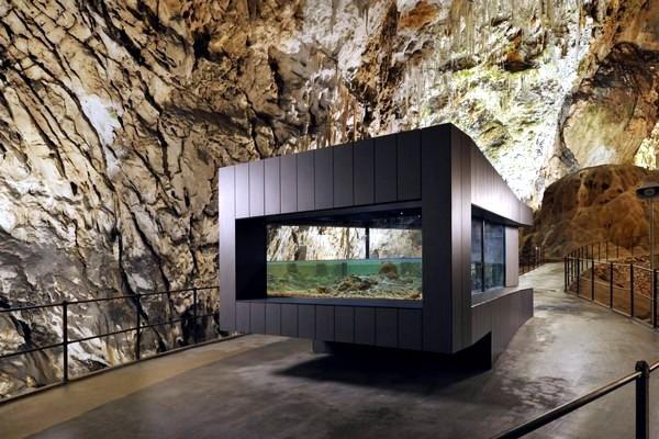 Minimalist Aquarium In Postojna Cave Slovenia Interior