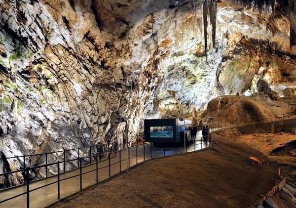 Minimalist Aquarium in Postojna Cave, Slovenia