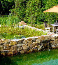 9-myths-about-organic-swimming-pond-in-the-organic-garden-0-633
