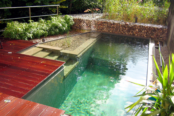 how to raise ph in pool naturally