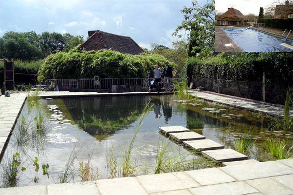 9 myths about organic swimming pond in the organic garden ...