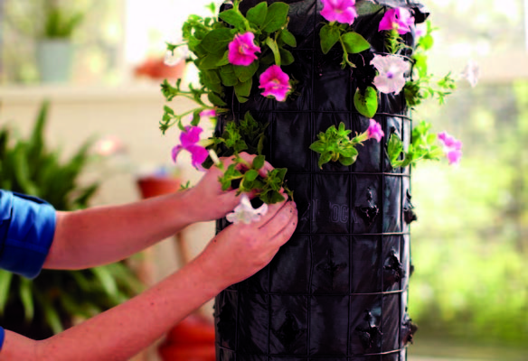 Ask flowers tower itself - the decor bulky garden and terrace