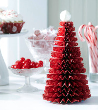 christmas-craft-idea-for-decorating-the-christmas-table-bit-0-646